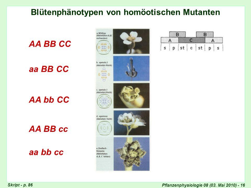 Genetische Erklärung der Blütenphänotypen