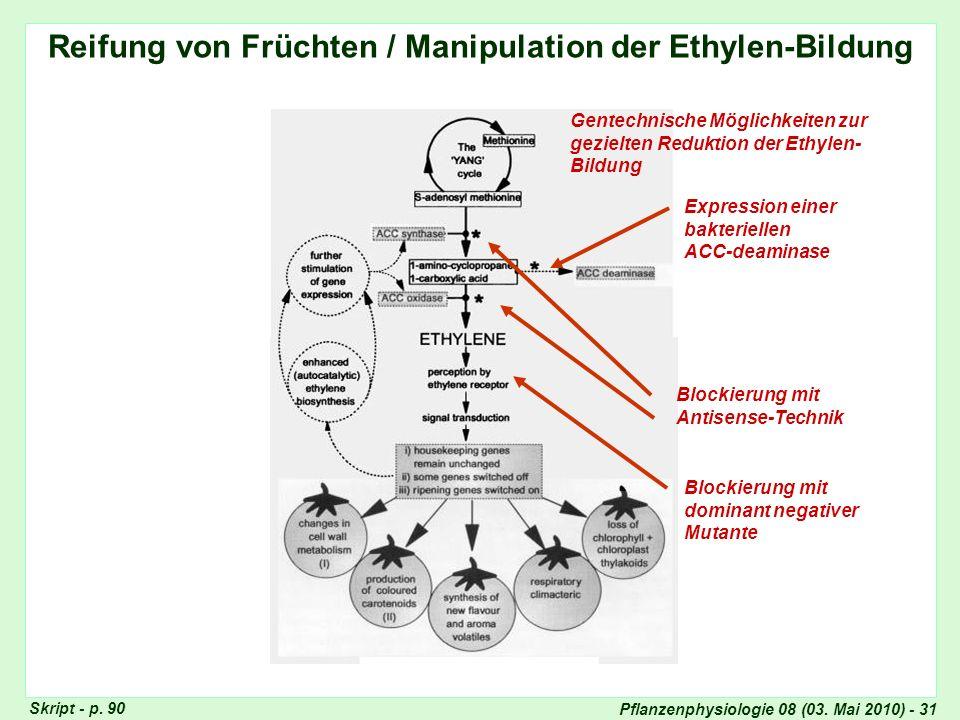 Reifung von Früchten / Manipulation der Ethylen-Bildung