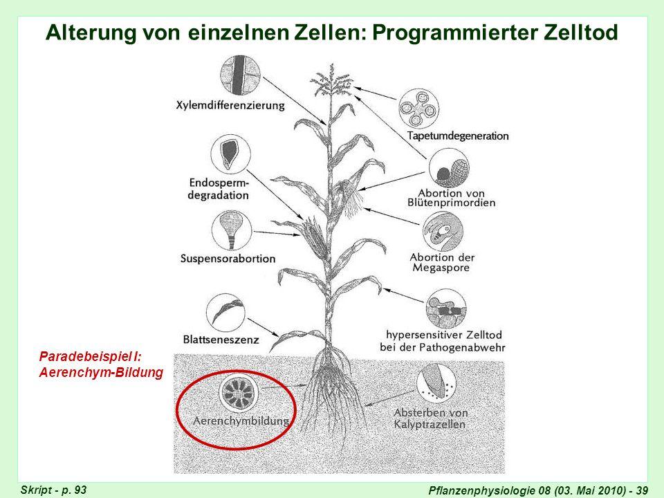 Alterung von einzelnen Zellen: Programmierter Zelltod