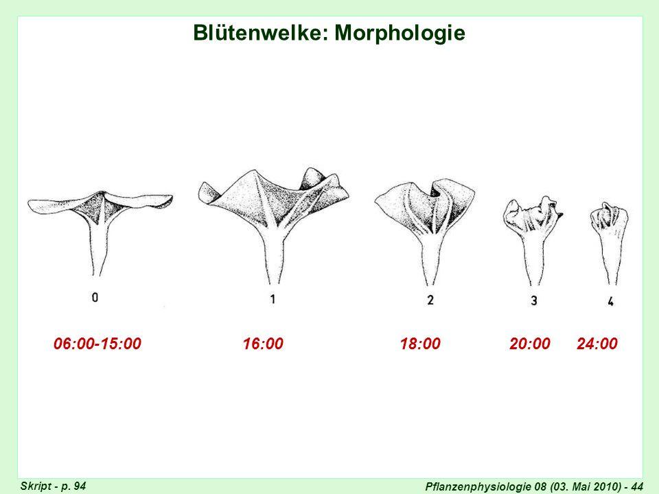 Blütenwelke: Morphologie