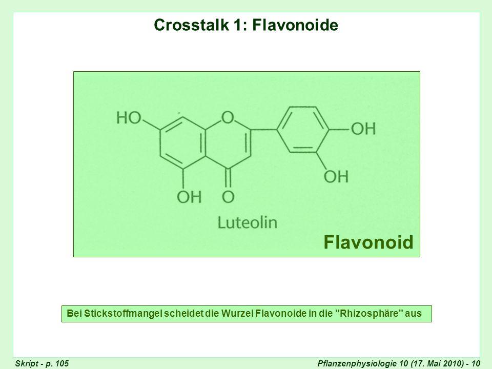 Crosstalk 1: Flavonoide