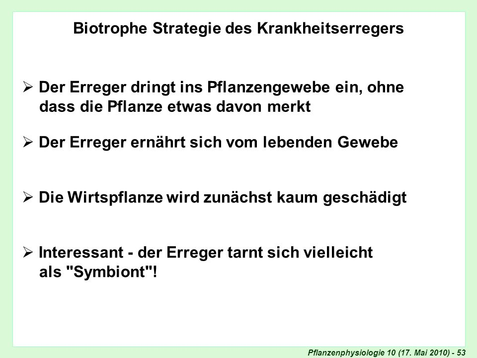 Biotrophe Strategie des Krankheitserregers