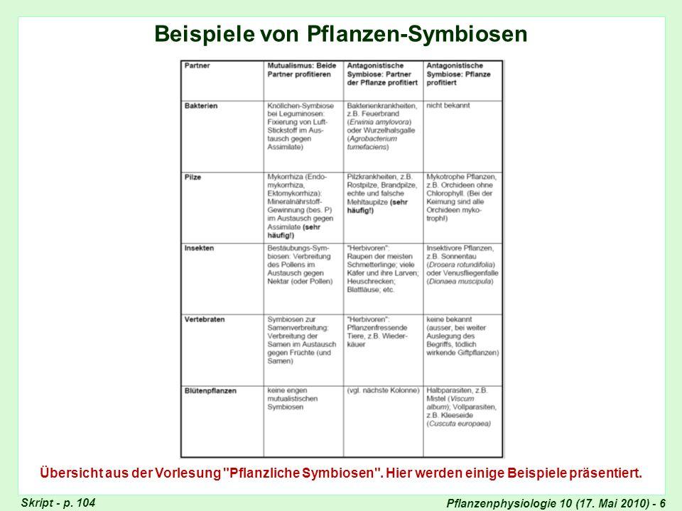 Beispiele von Symbiosen