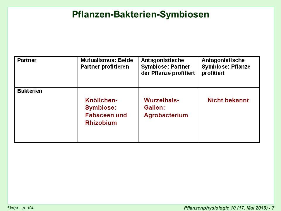 Pflanzen-Bakterien-Symbiosen ausgefüllt