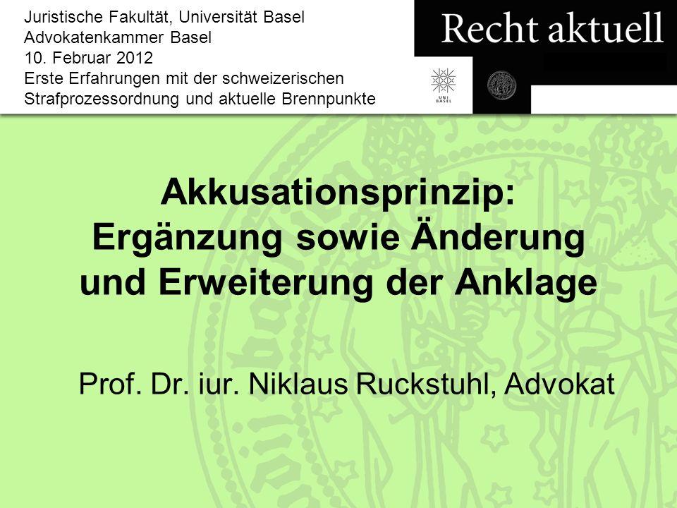 Prof. Dr. iur. Niklaus Ruckstuhl, Advokat