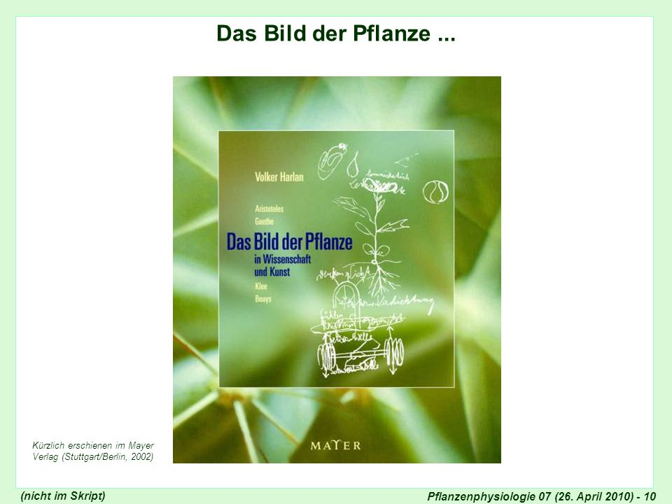 Bild der Pflanze in Wissenschaft und Kunst