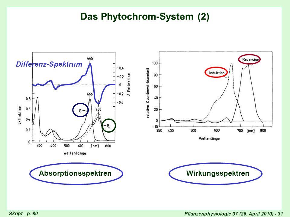 Das Phytochrom-System (2)