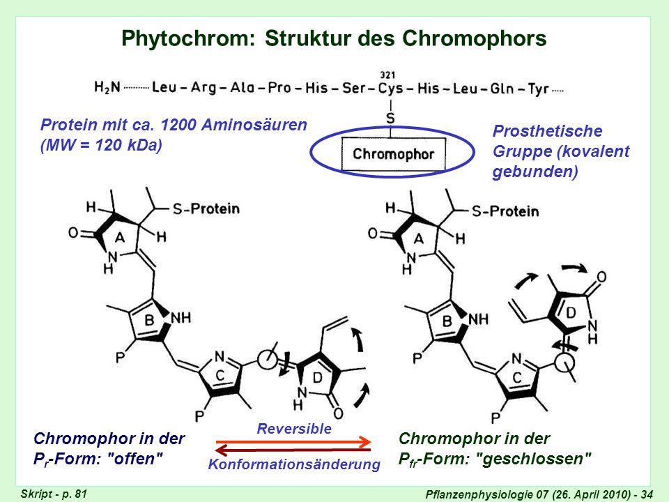 Phytochrom - Struktur des Chromophors
