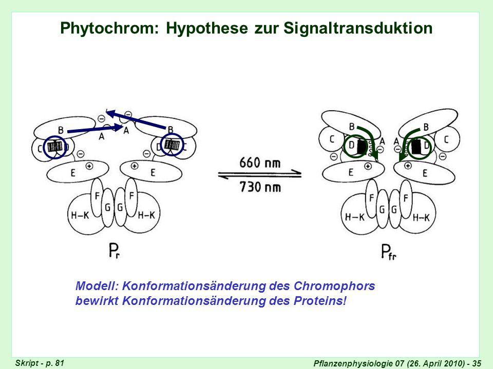Phytochrom: Signaltransduktion