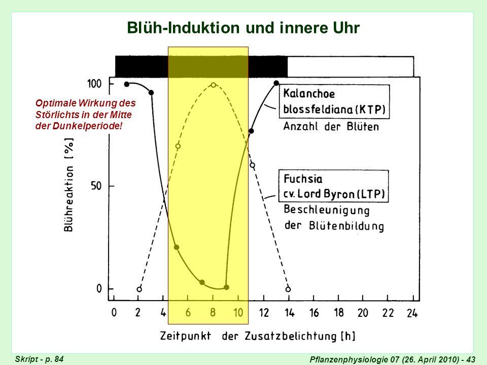 Blüh-Induktion und innere Uhr