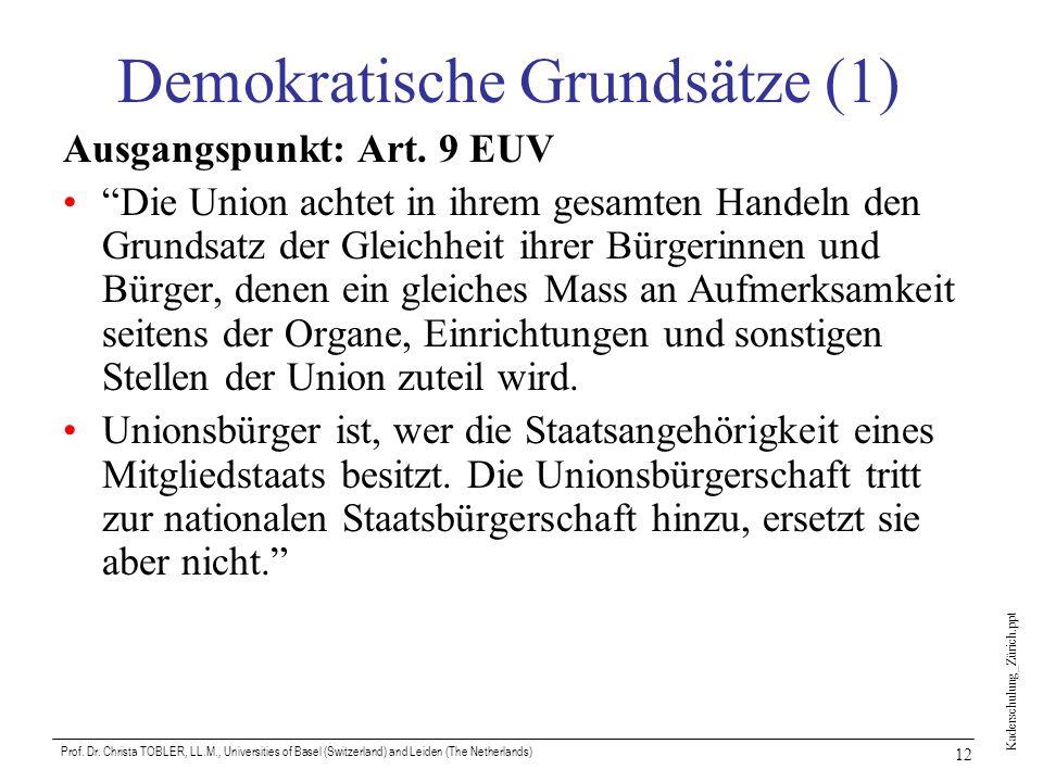 Demokratische Grundsätze (1)