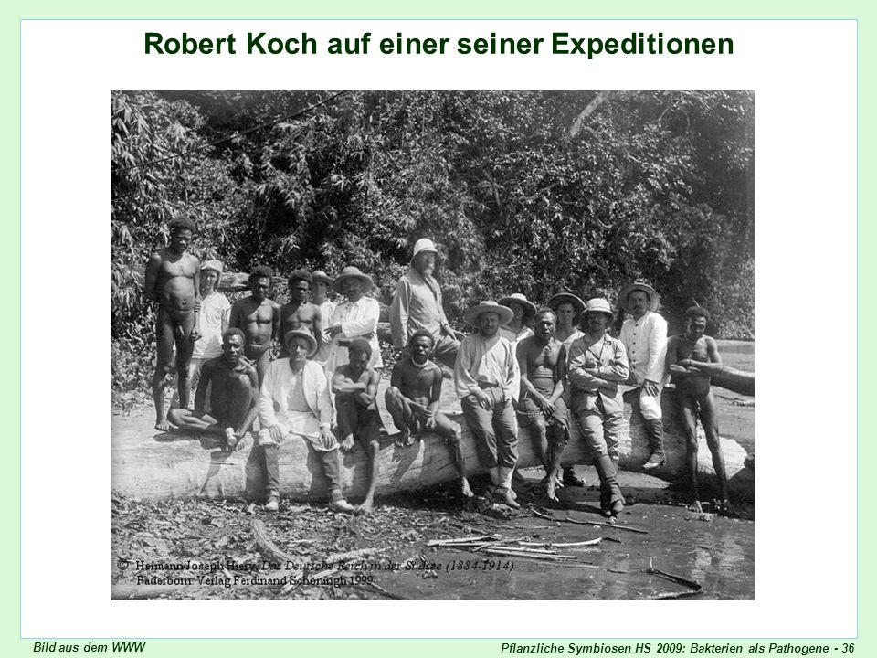 Robert Koch, Expedition