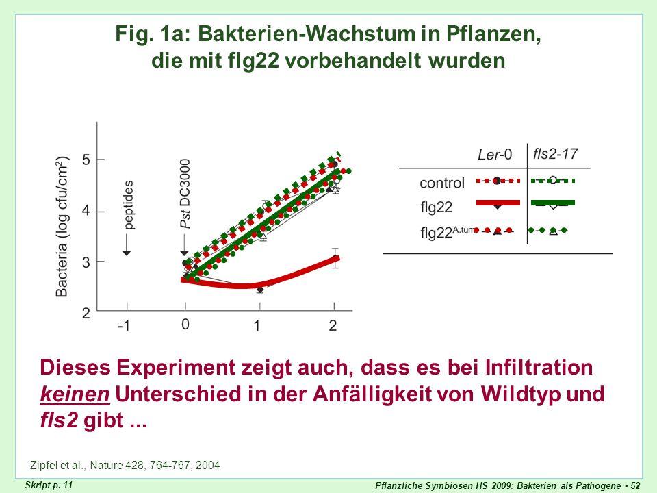 Zipfel Fig. 1aFig. 1a: Bakterien-Wachstum in Pflanzen, die mit flg22 vorbehandelt wurden.