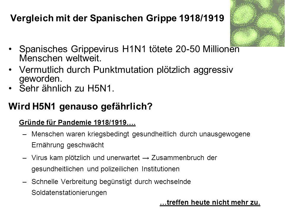 Vergleich mit der Spanischen Grippe 1918/1919