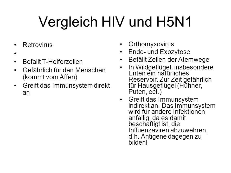 Vergleich HIV und H5N1 Retrovirus Befällt T-Helferzellen