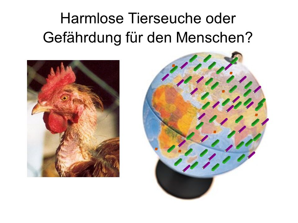 Harmlose Tierseuche oder Gefährdung für den Menschen