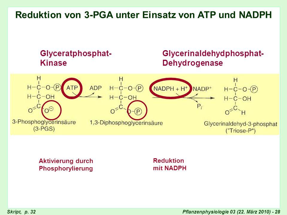 Reduktion von 3-PGA unter Einsatz von ATP und NADPH