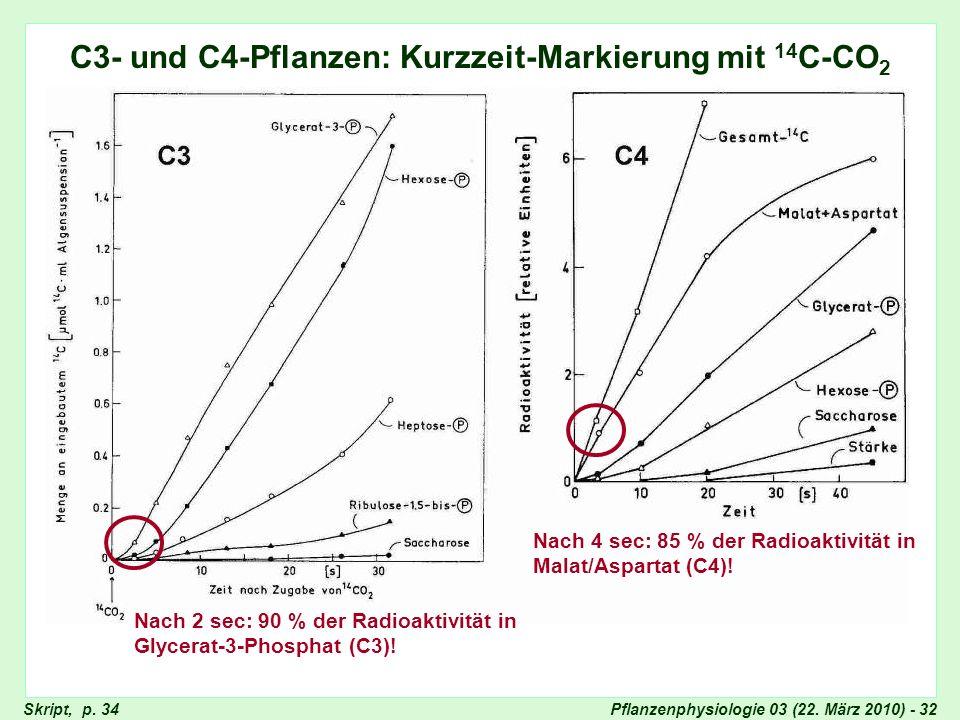 C4: Kurzzeit-Markierung
