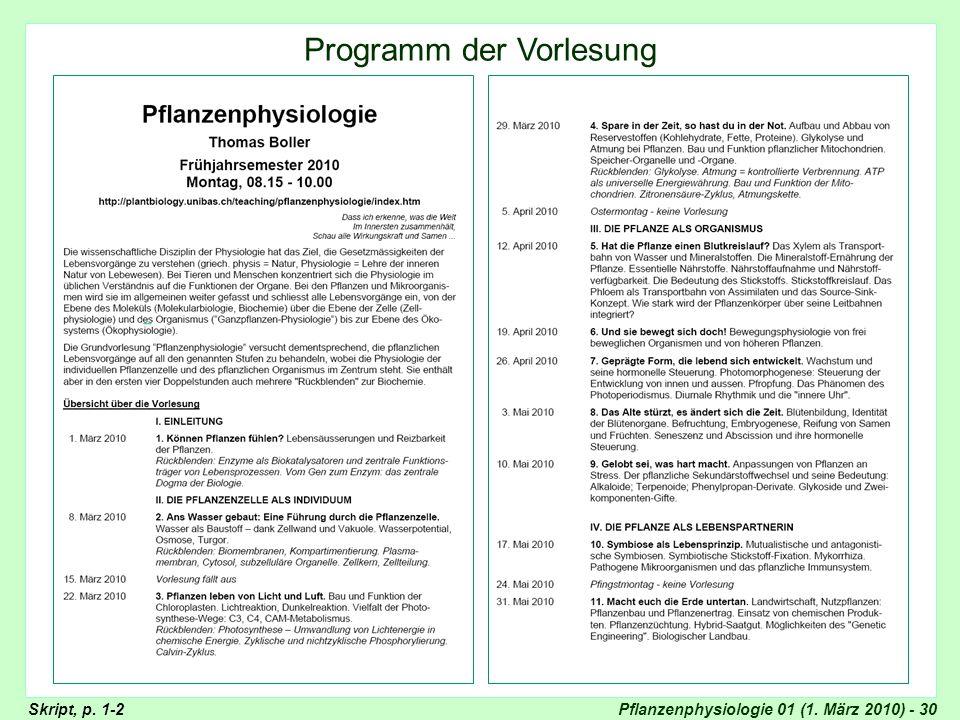 Programm der Vorlesung