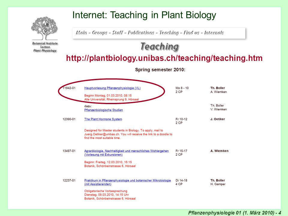 Internet: Teaching in Plant Biology