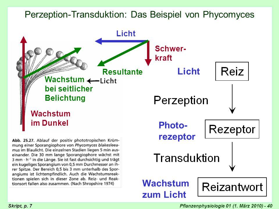 Perzeption-Transduktion: Das Beispiel von Phycomyces