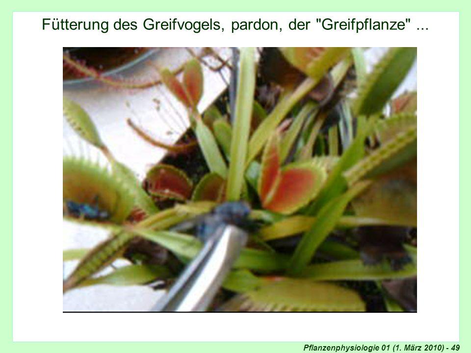 Fütterung des Greifvogels, pardon, der Greifpflanze ...