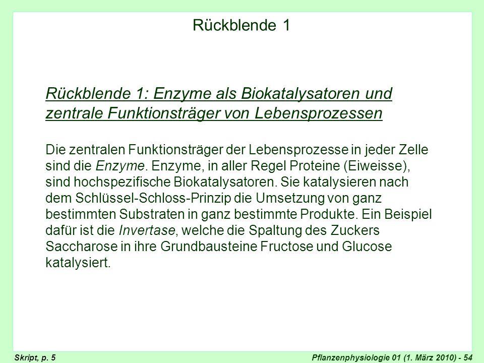 Rückblende: Enzyme Rückblende 1. Rückblende 1: Enzyme als Biokatalysatoren und zentrale Funktionsträger von Lebensprozessen.