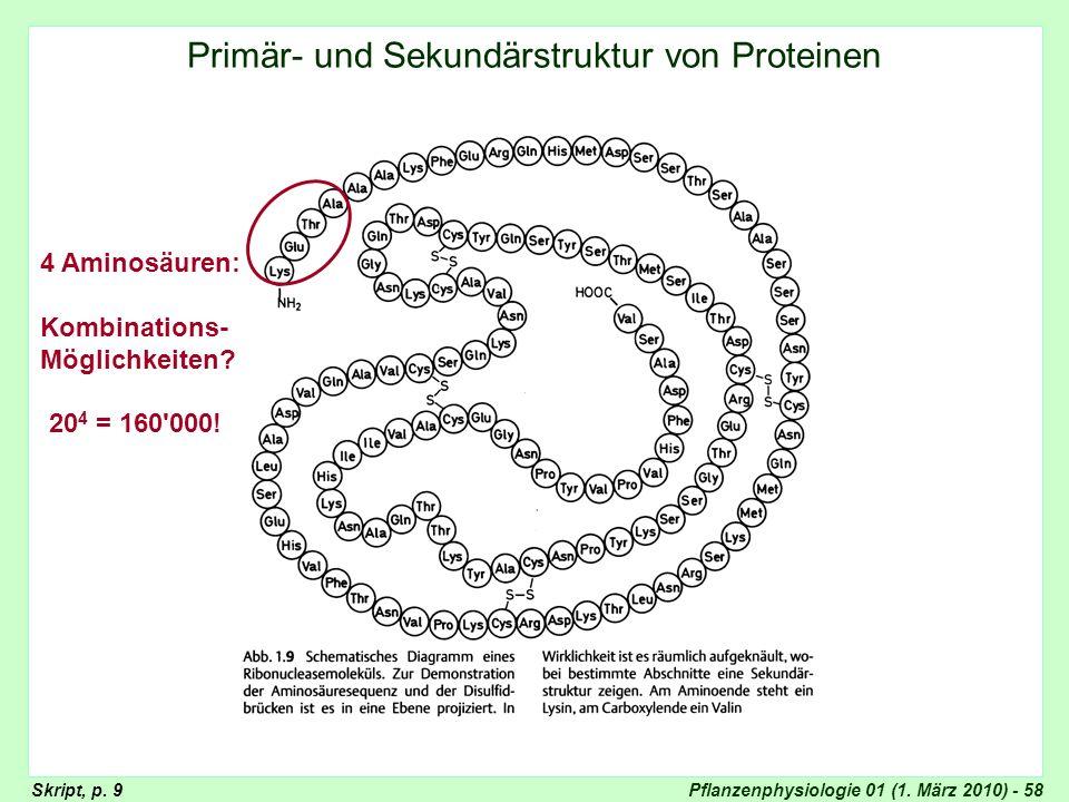 Primär- und Sekundärstruktur