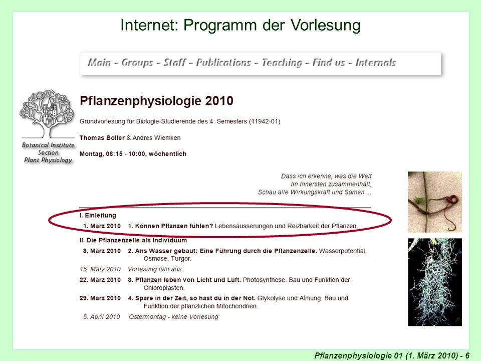 Internet: Programm der Vorlesung
