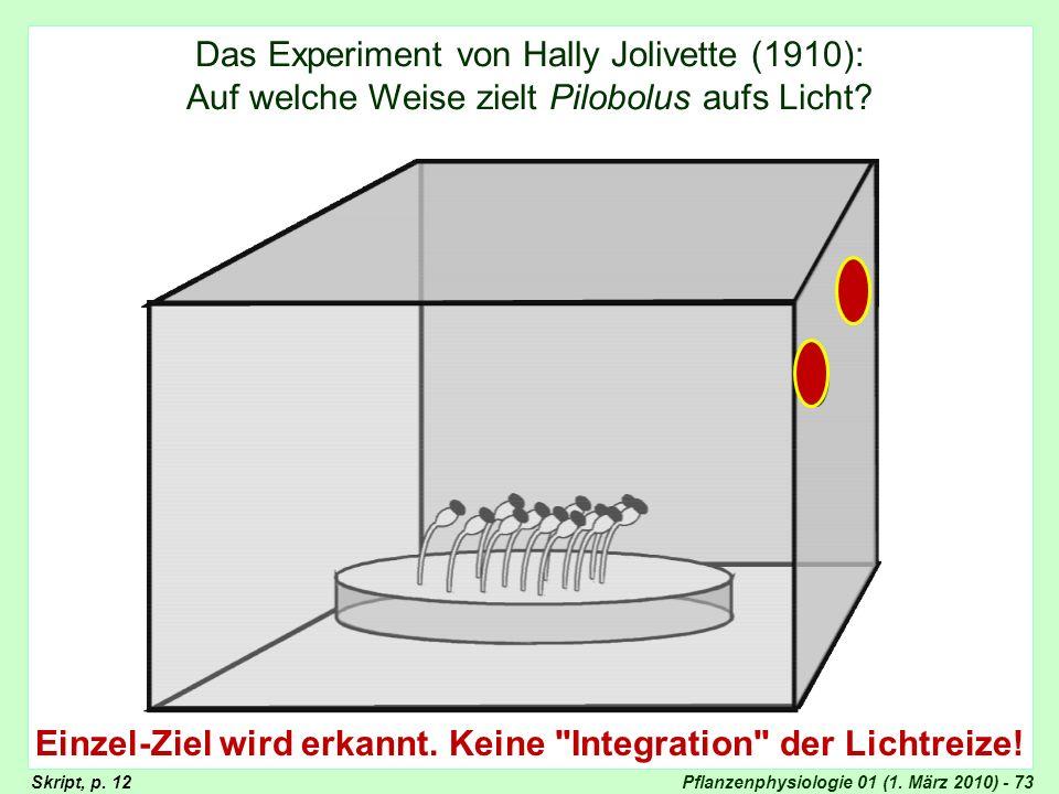 Experiment von Hally Jolivette