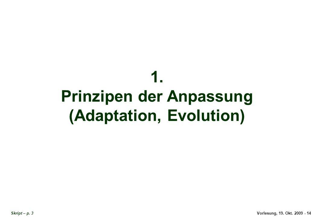 Titel: Prinzipien der Anpassung