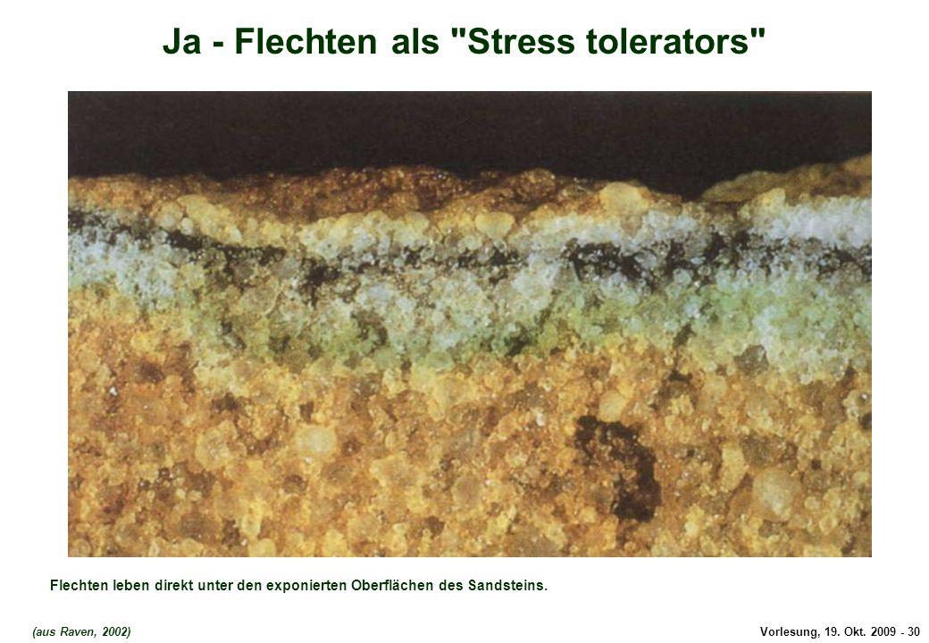 Ja - Flechten als Stress tolerators