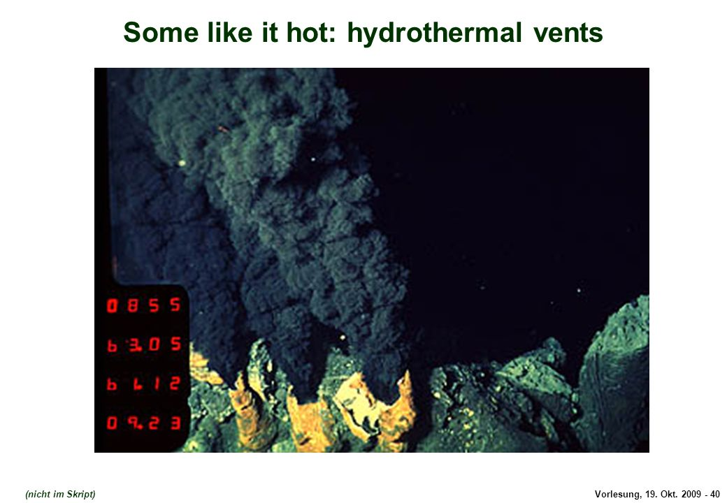 Some like it hot: hydrothermal vents