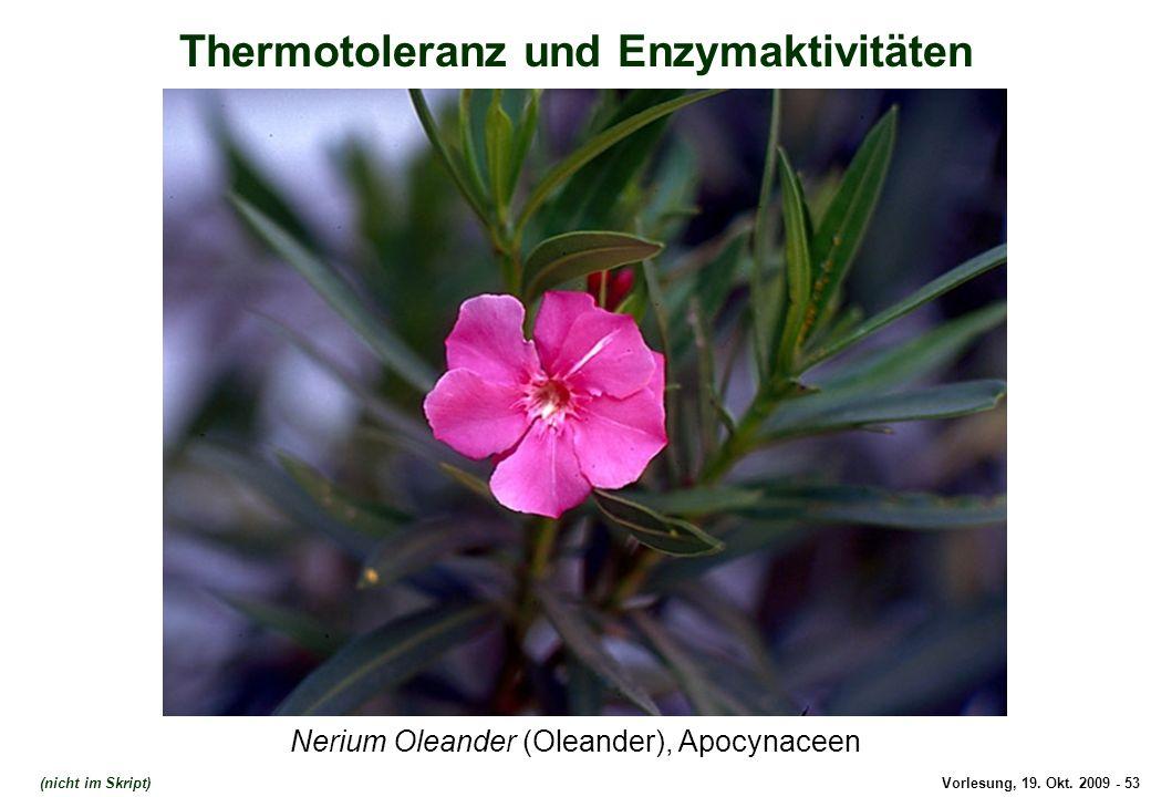 Thermotoleranz und Enzymaktivitäten