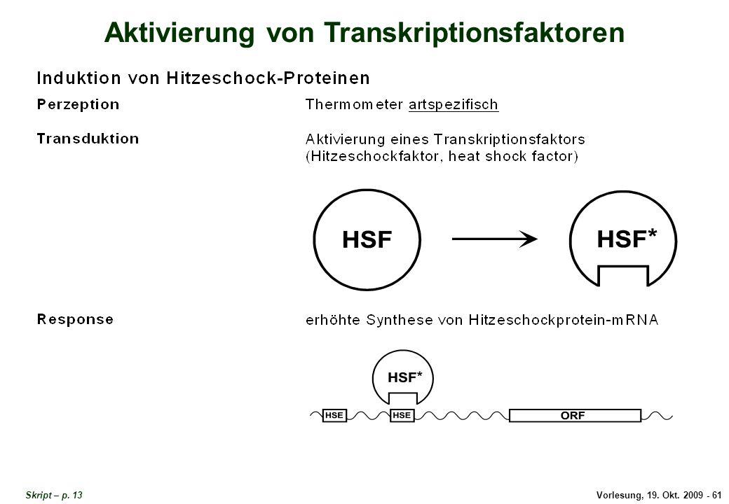 Aktivierung von Transkriptionsfaktoren
