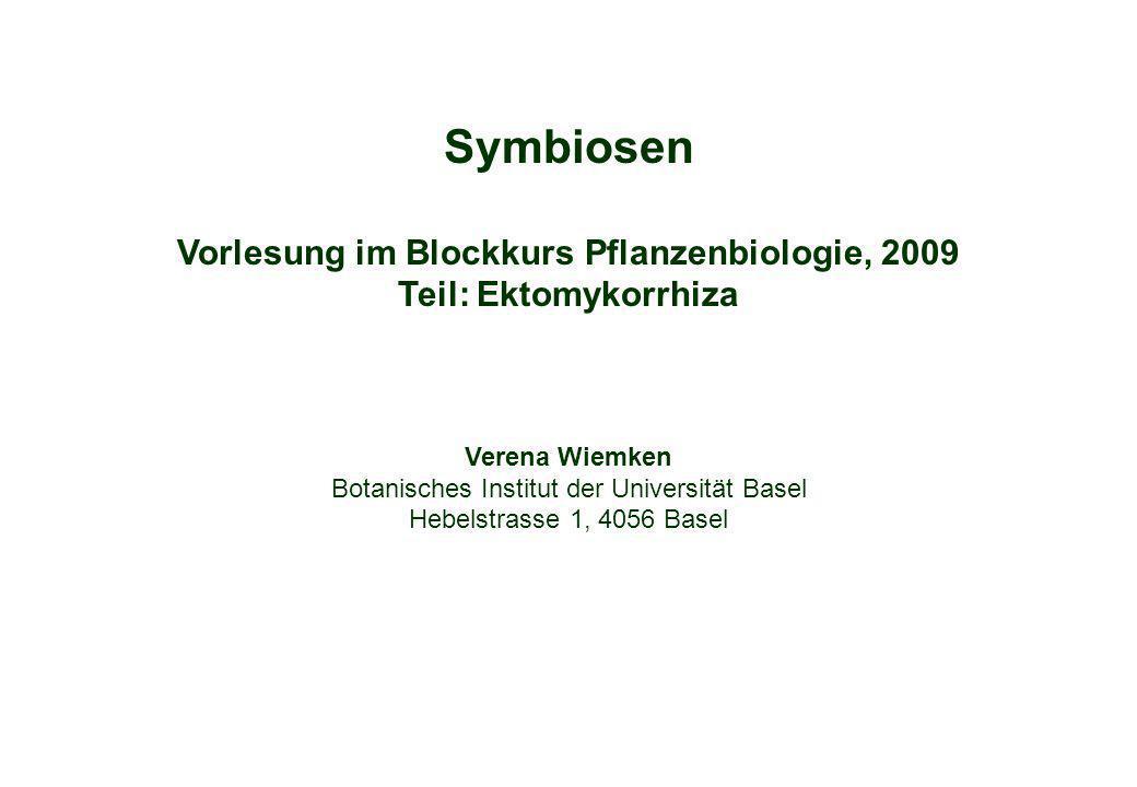 Symbiosen Vorlesung im Blockkurs Pflanzenbiologie, 2009 Teil: Ektomykorrhiza. Verena Wiemken. Botanisches Institut der Universität Basel.