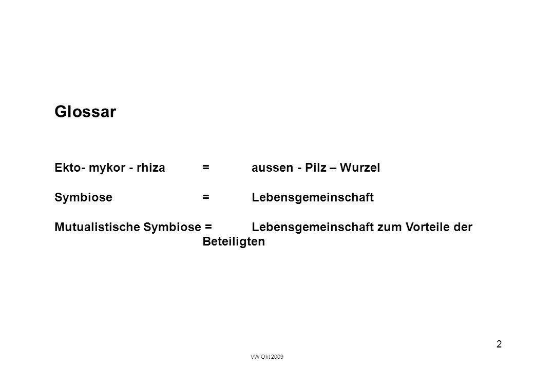 Ekto- mykor - rhiza = aussen - Pilz – Wurzel