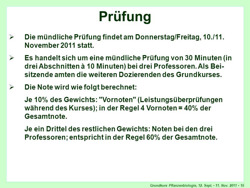 Prüfung Prüfung. Die mündliche Prüfung findet am Donnerstag/Freitag, 10./11. November 2011 statt.