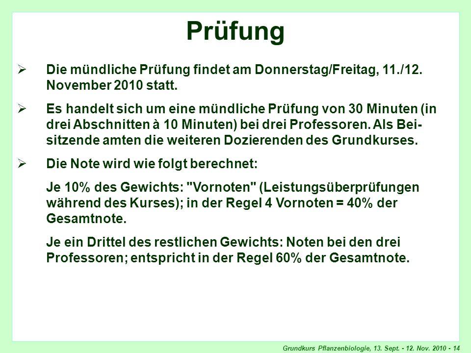 Prüfung Prüfung. Die mündliche Prüfung findet am Donnerstag/Freitag, 11./12. November 2010 statt.