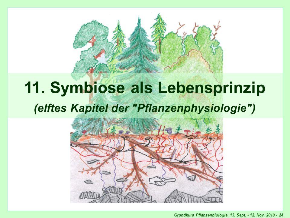 Symbiose als Lebensprinzip