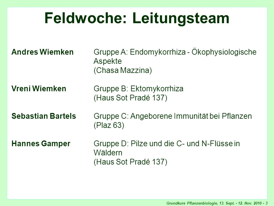 Feldwoche: Leitungsteam