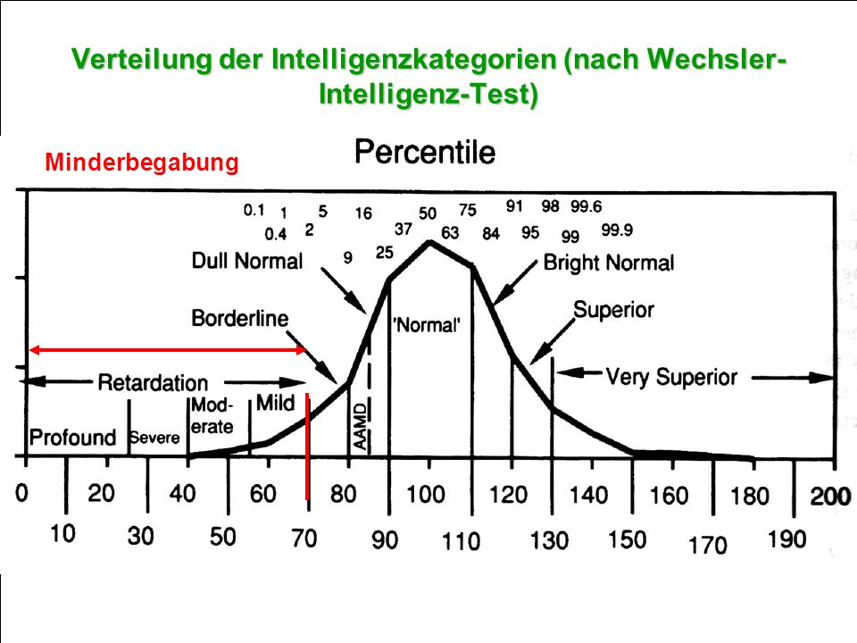 Verteilung der Intelligenzkategorien (nach Wechsler-Intelligenz-Test)