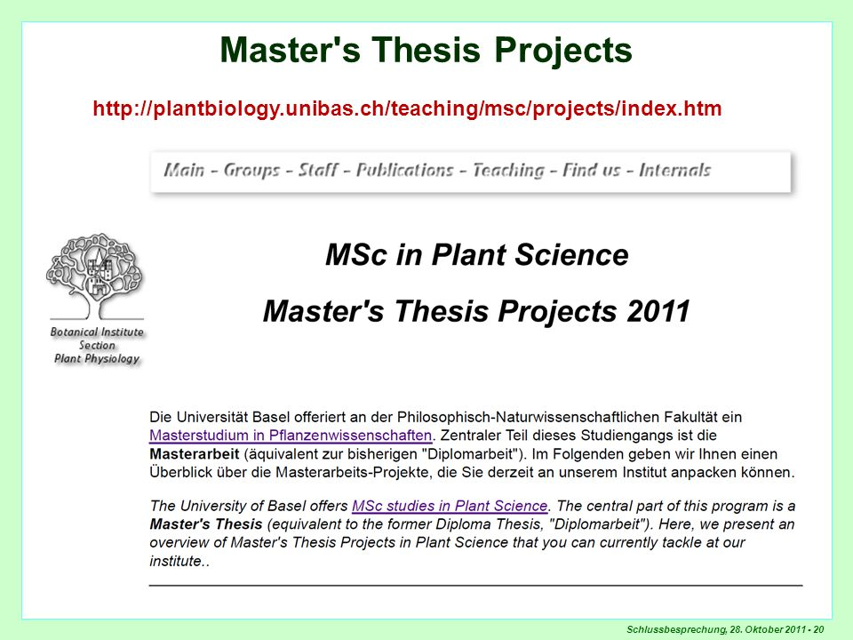 Master s Thesis Projects