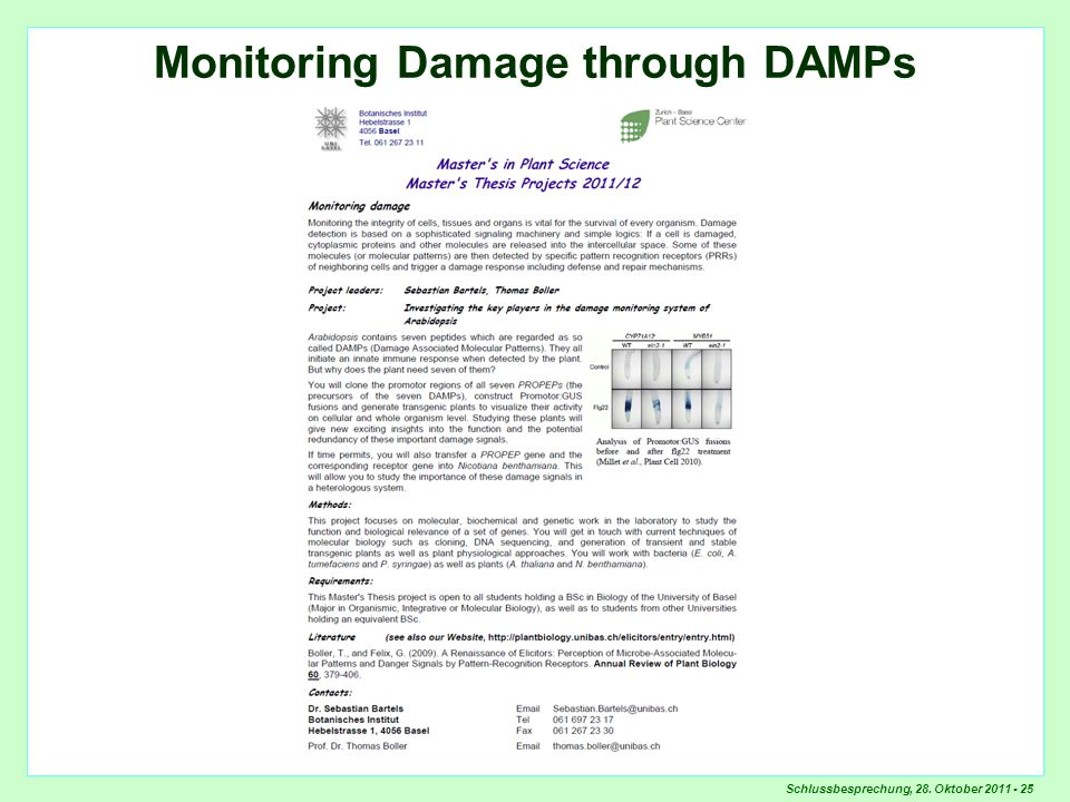 Monitoring Damage through DAMPs