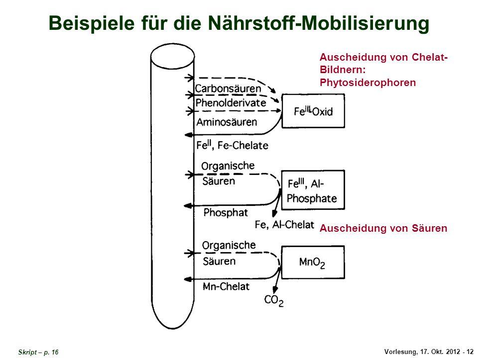 Beispiele Nährstoff-Mobilisierung