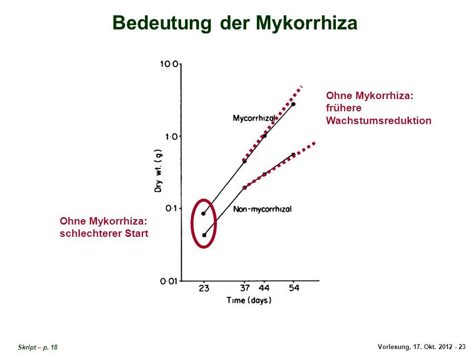 Bedeutung der Mykorrhiza