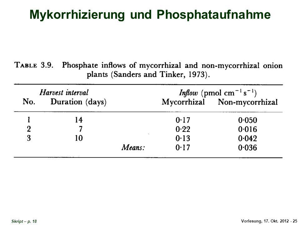 Mykorrhizierung und Phosphat-Aufnahme