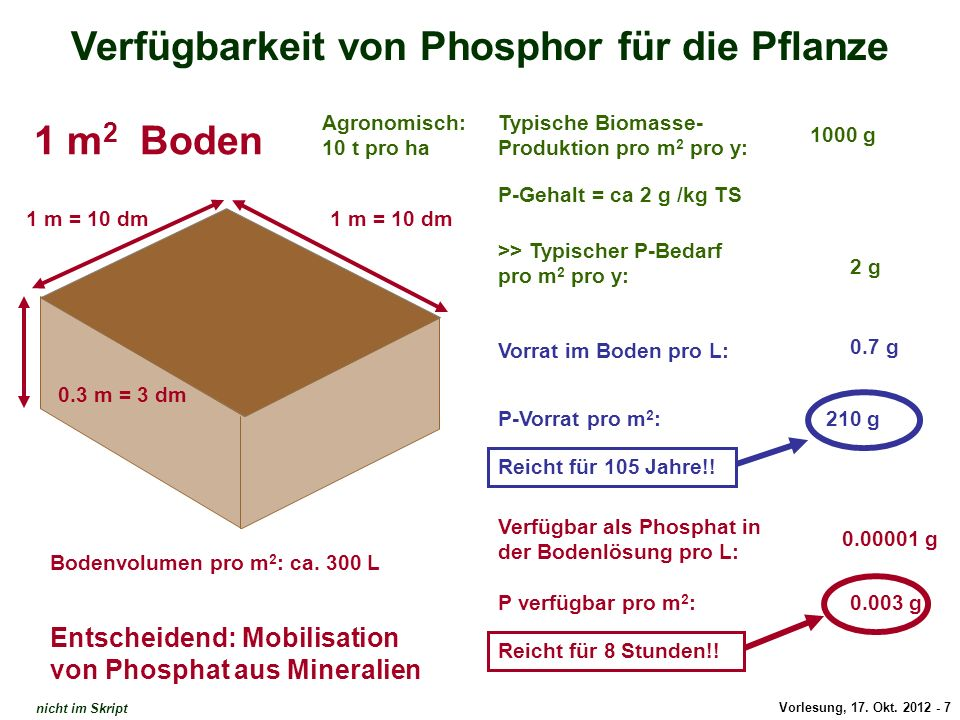 Verfügbarkeit von Phosphor