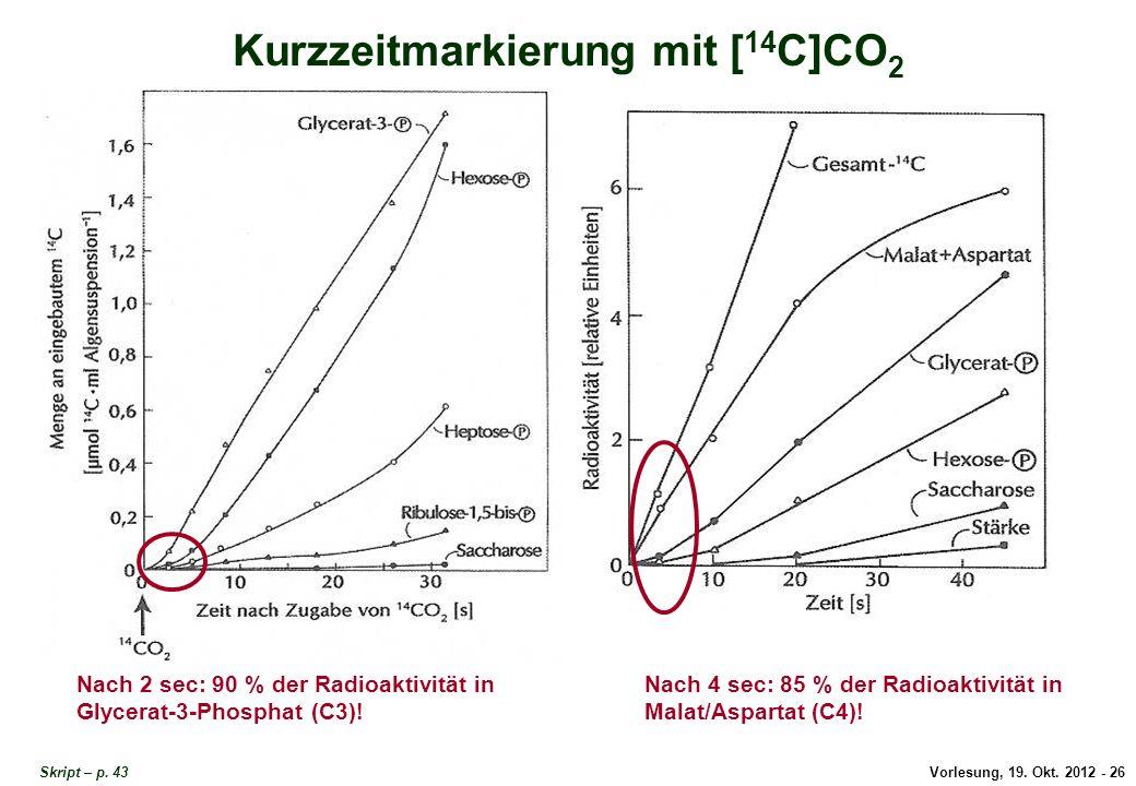 Kurzzeitmarkierung mit 14C-CO2