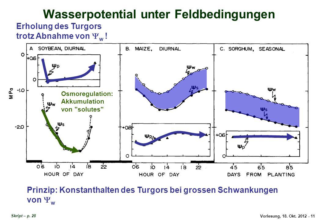 Wasserpotential unter Feldbedingungen